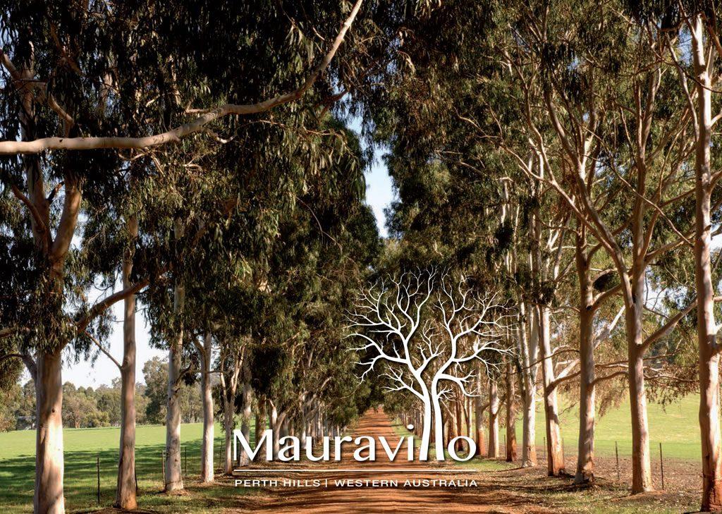 Maurovillo